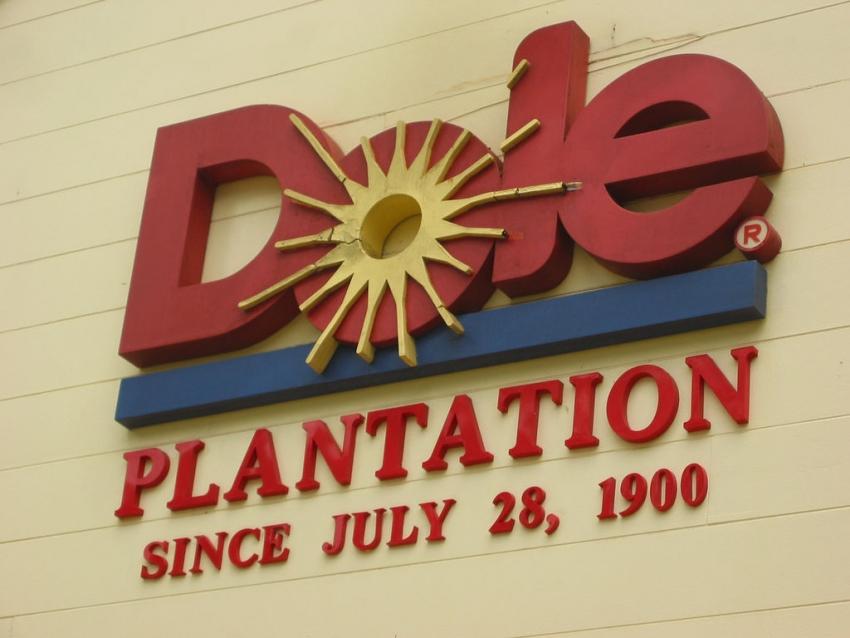Dole Plantation - Wahiawa, HI