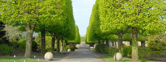 Chicago Botanic Garden Glencoe Il