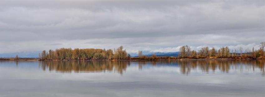 Sauvie Island Wildlife Area - Portland, OR