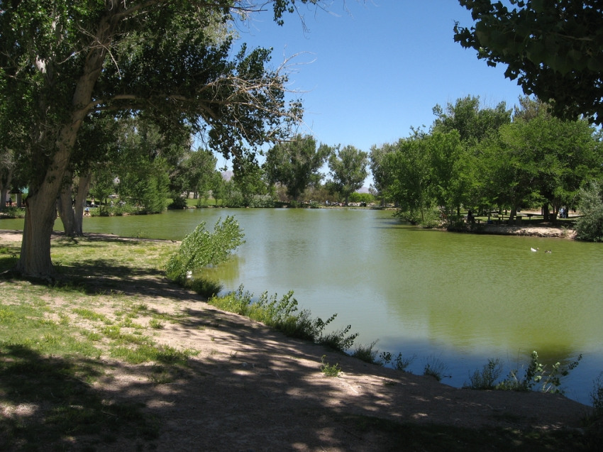 Floyd lamb state park las vegas tourist attractions for Floyd lamb park fishing