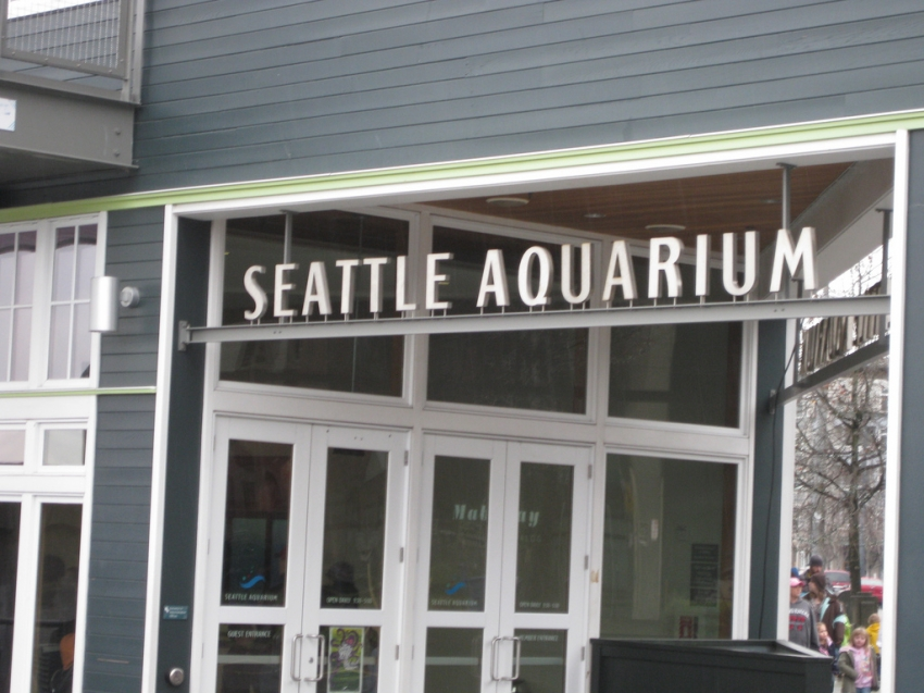 SEATTLE AQUARIUM - Seattle, WA
