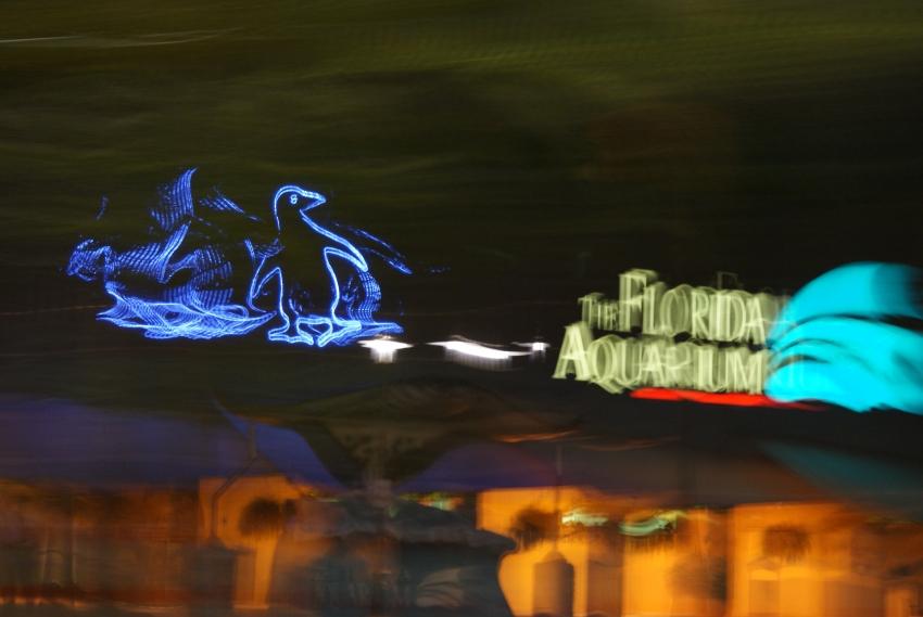 Florida Aquarium - Tampa, FL
