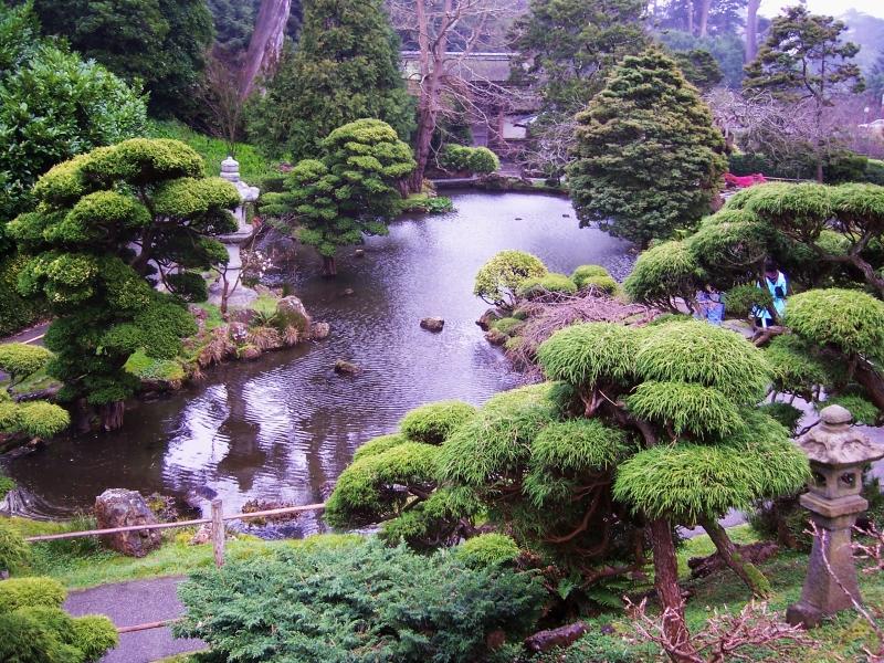 Japanese Tea Garden San Francisco CitySeeker