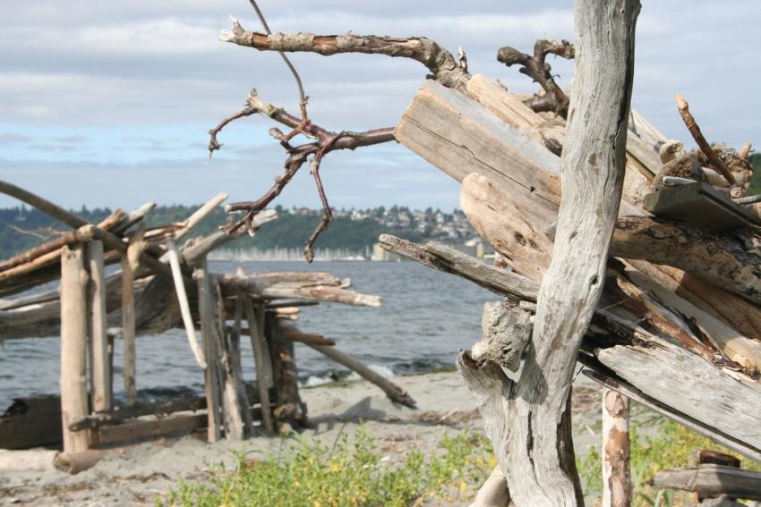 Discovery Park - Seattle, WA