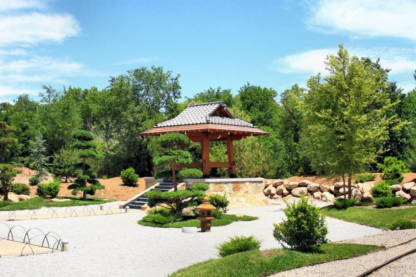 Abq biopark botanic garden albuquerque cityseeker - Botanical gardens albuquerque new mexico ...