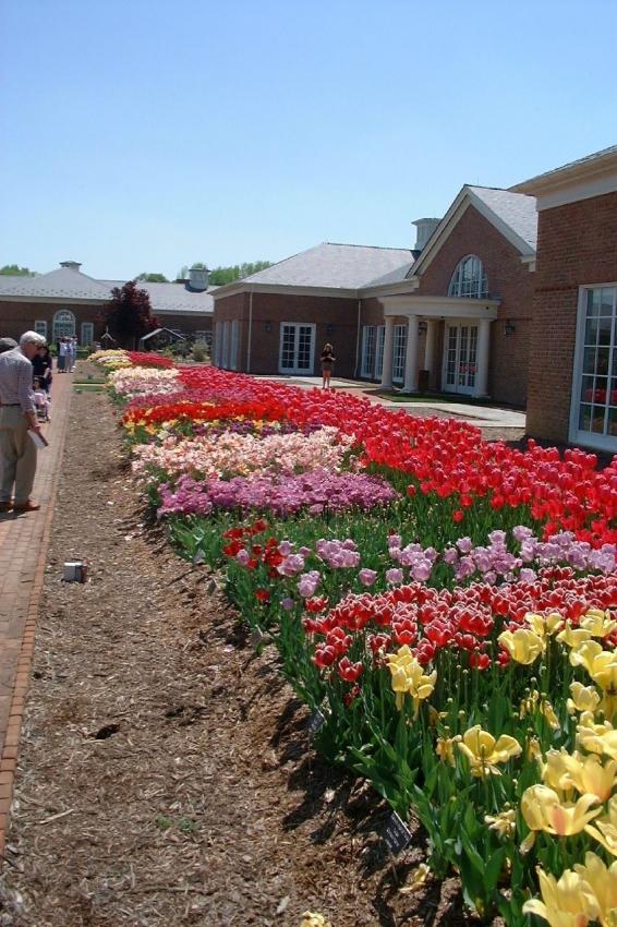 Lewis Ginter Botanical Garden Richmond Tourist Attractions Sightseeing Outdoor Activities