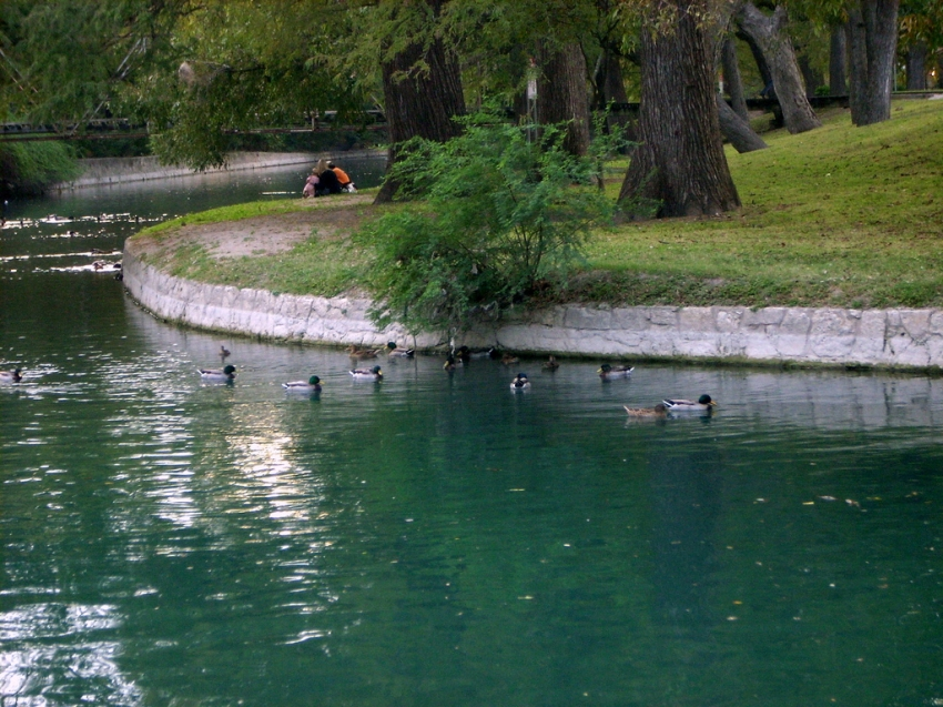 Brackenridge Park - San Antonio, TX