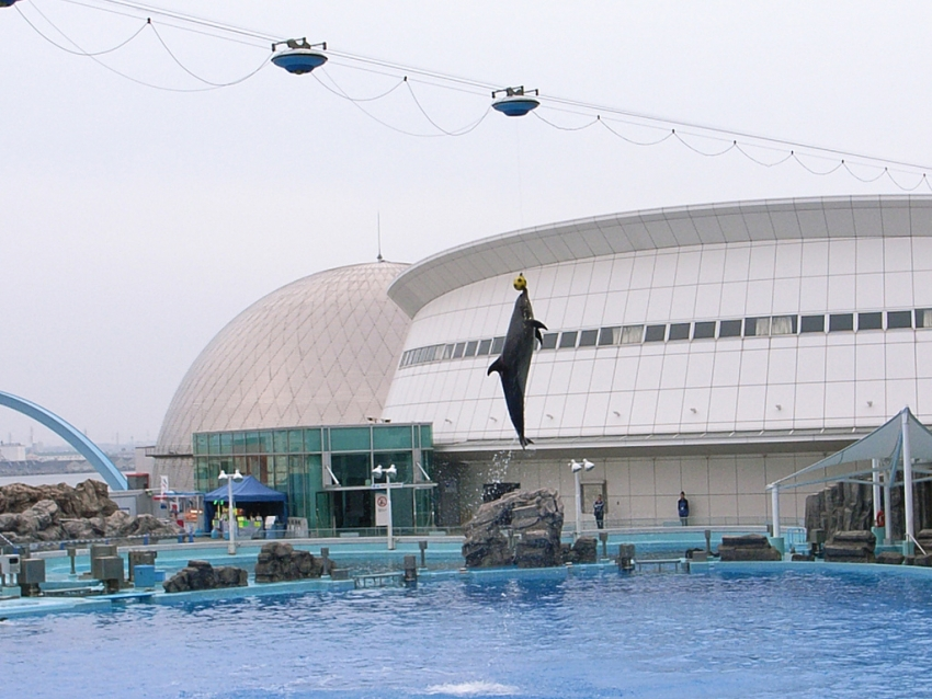 Port of Nagoya Aquarium  Nagoya  Tourist Attractions ...
