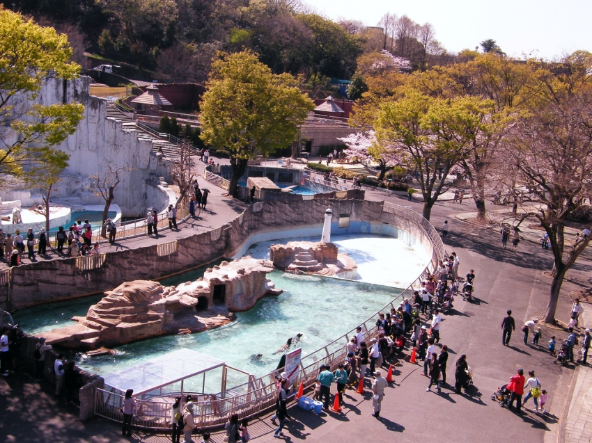 Higashiyama Zoo and Botanical Gardens, Nagoya, CitySeeker