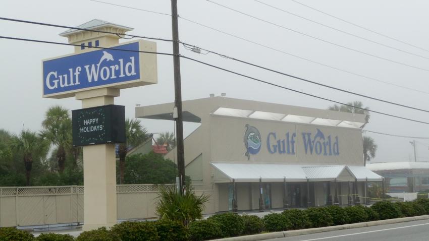 Gulf World Marine Park - Panama City Beach, FL