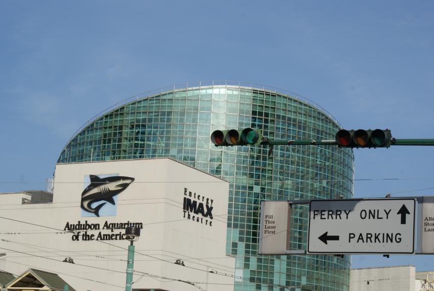 Audubon Aquarium Of The Americas New Orleans Cityseeker