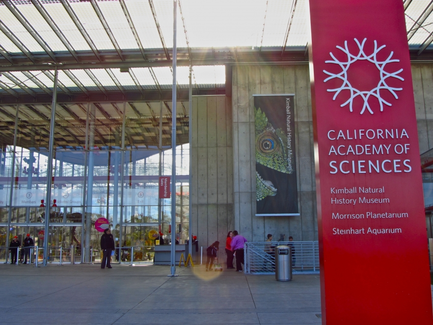 California academy sciences san francisco eventseeker