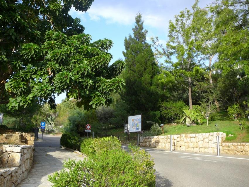 Jardin botanique nice cityseeker for Jardin botanique nice