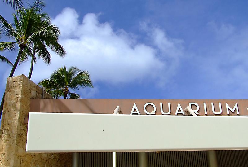 Waikiki Aquarium - Honolulu, HI