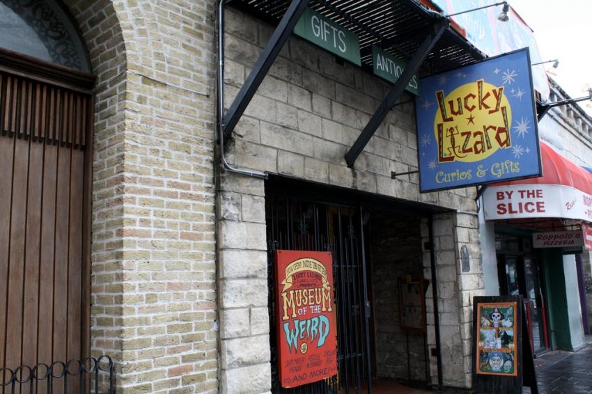 Lucky Lizard Curios & Gifts - Austin, TX
