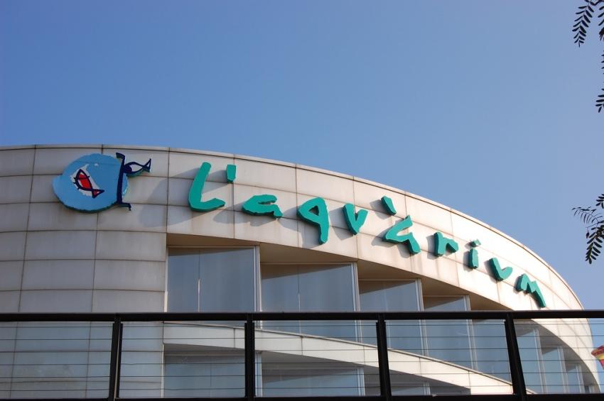 Aquarium barcelona barcelona cityseeker for Aquarium valencia bar