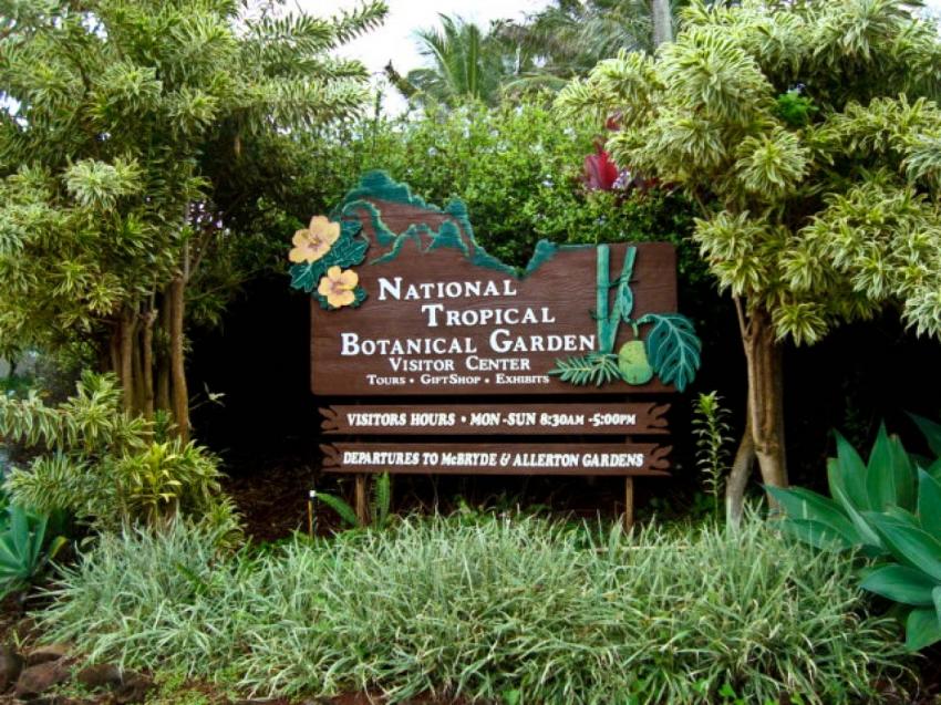 Lawai Allerton Gardens Koloa CitySeeker