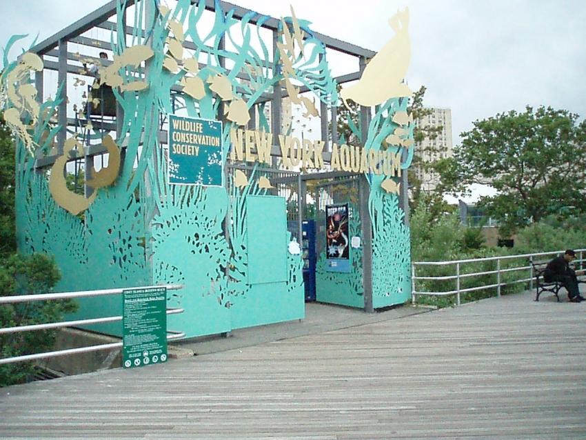 New York Aquarium New York Cityseeker