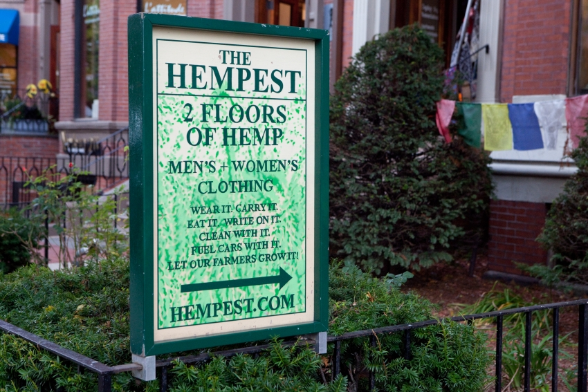 The Hempest - Boston, MA
